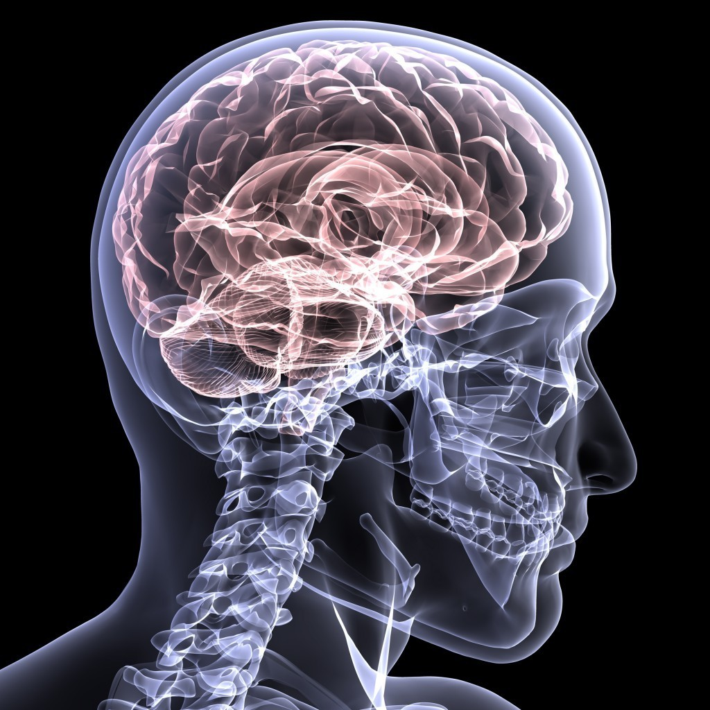 brain injury personal injury attorney brain injuries Brain Injuries brain injuries