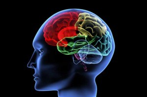 Cranston RI Head Injury Lawyer:  How Much Is Your Head Injury Claim?