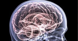 Brain Injuries personal injury lawyers Home brain injuries